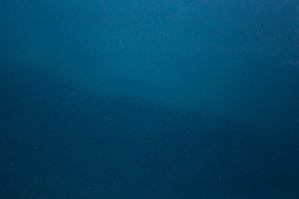 evelyn-pritt-flight-ocean-10-20150108-IMG-9441-1200px.jpg